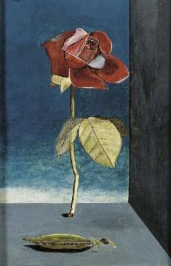 Lucian Freud - Rose