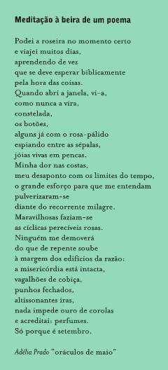 ROSAS.TERRA 1999 PAULO VON POSER (23)