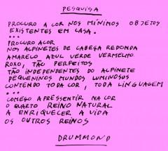 CORES PIRACICABA_1983 (4)