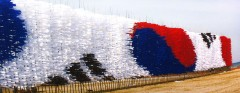 FLAG ART (8)